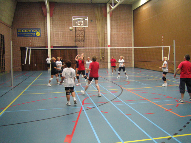 Volleybal dames